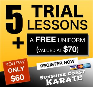 5 lesson trial offer
