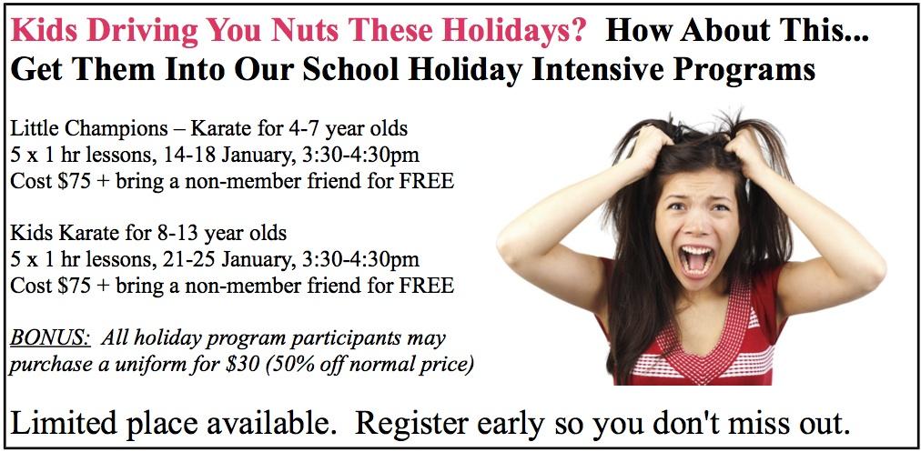 School Holiday Karate Program